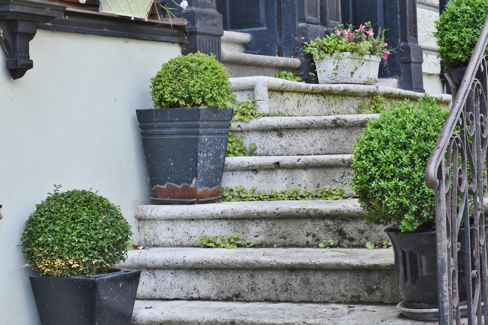 階段のある玄関の家