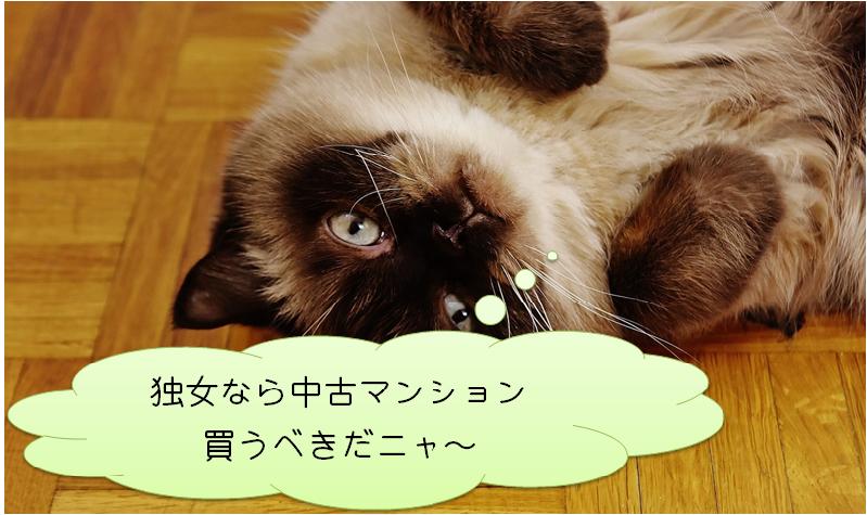 寝ころぶ猫
